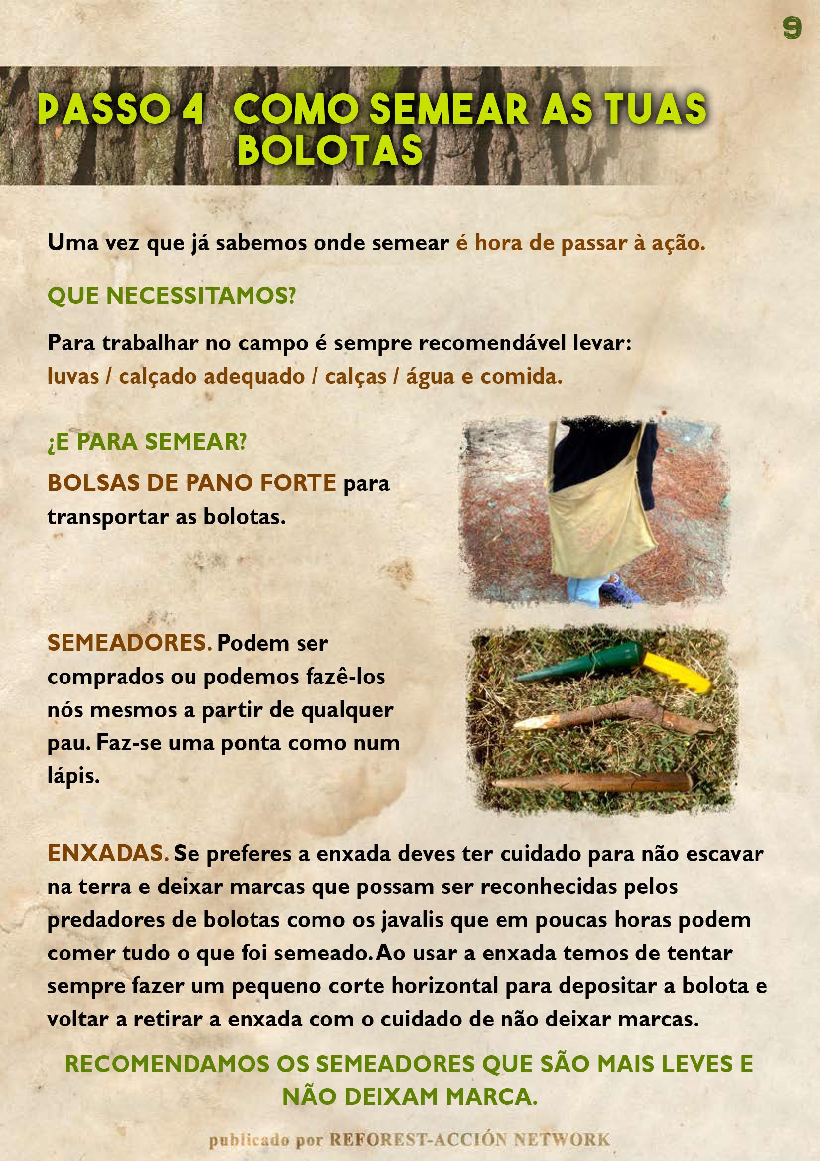 GUIA BELLOTERA - PAG 10 PT