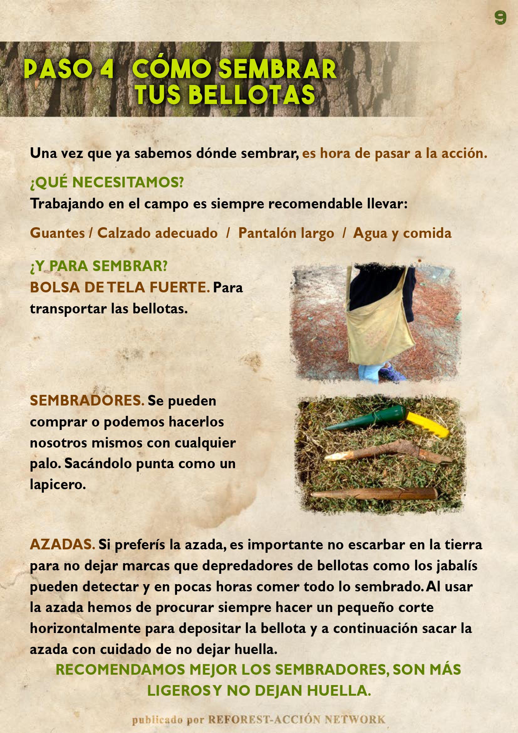 GUIA BELLOTERA - PAG 10