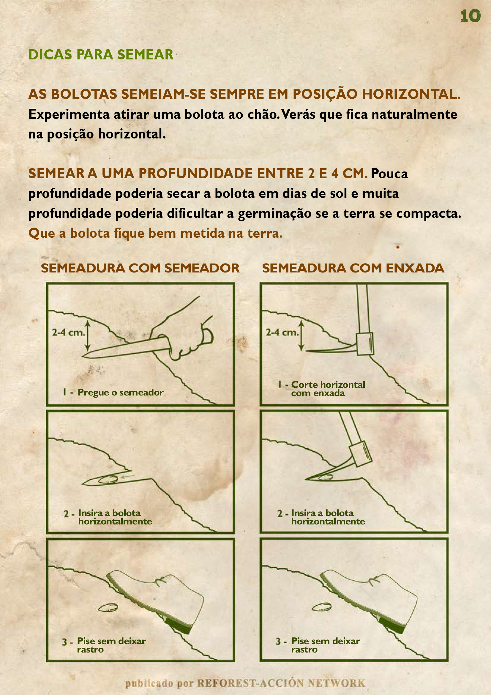 GUIA BELLOTERA - PAG 11 PT