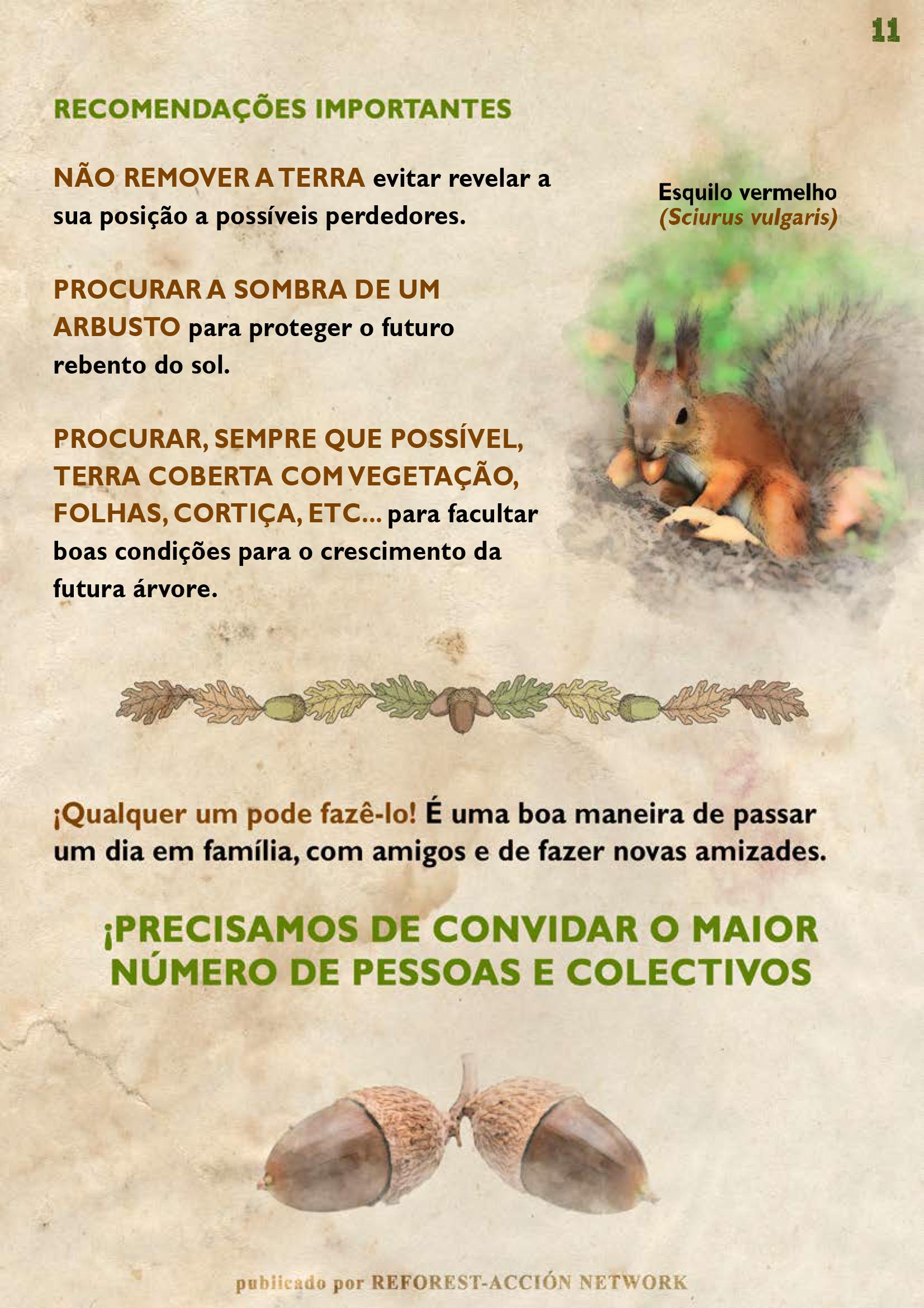 GUIA BELLOTERA - PAG 12 PT