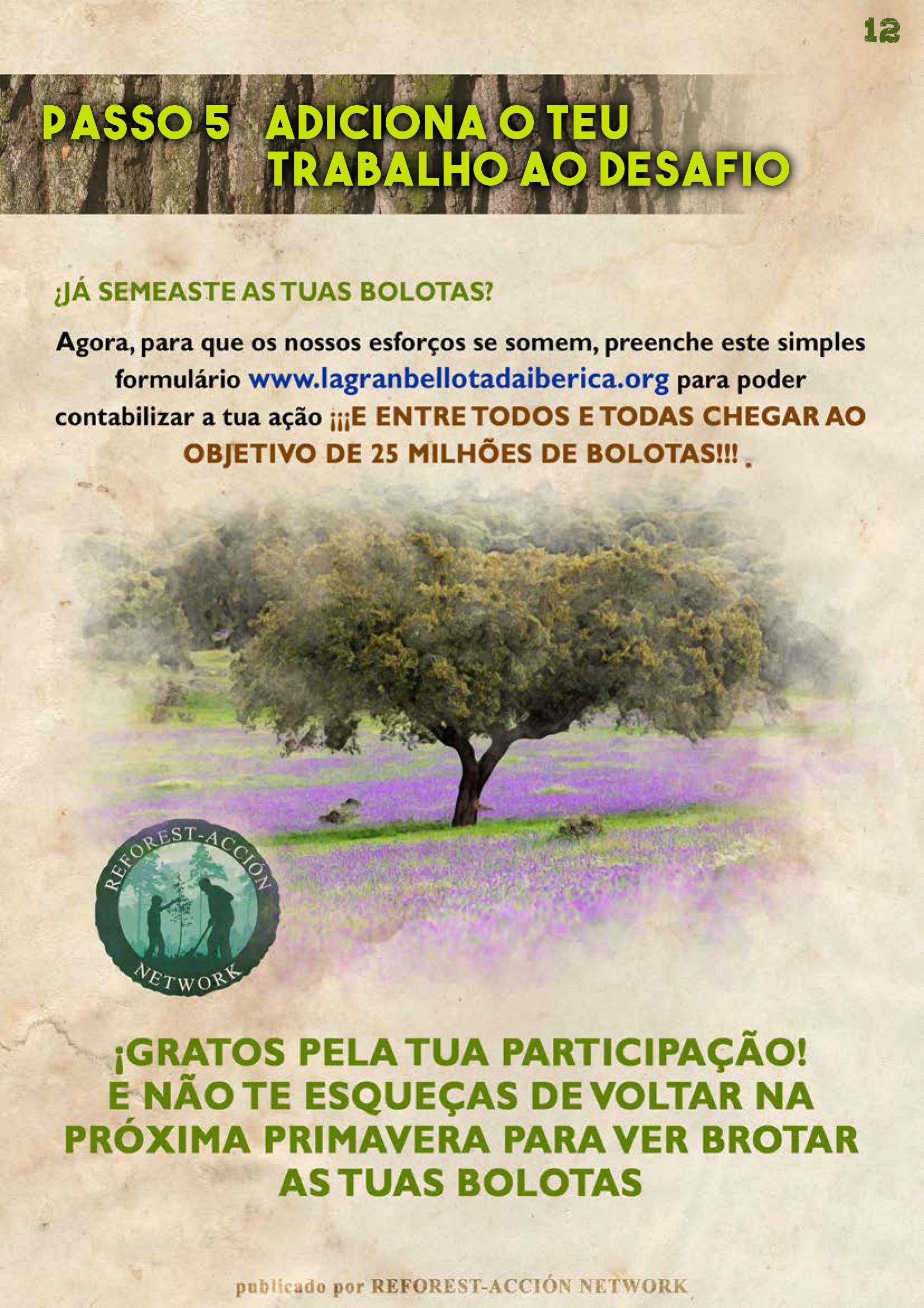 GUIA BELLOTERA - PAG 13 PT