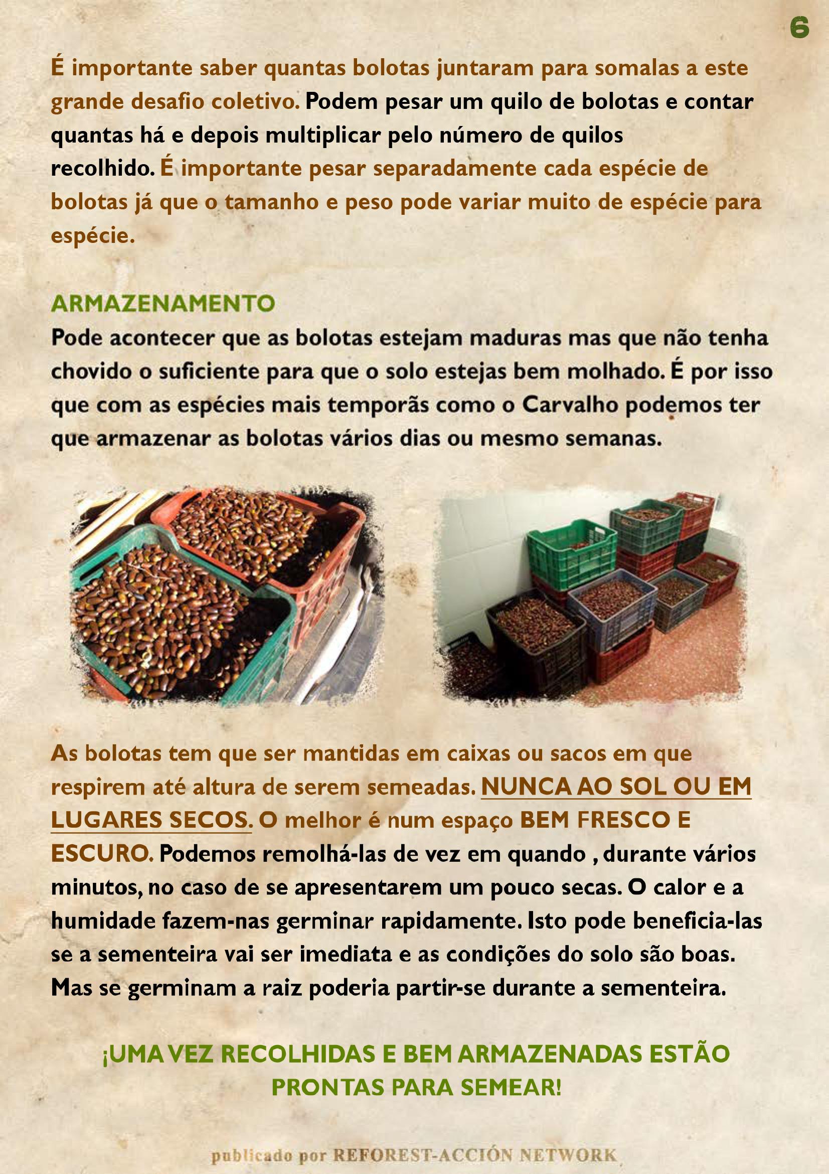 GUIA BELLOTERA - PAG 7 PT
