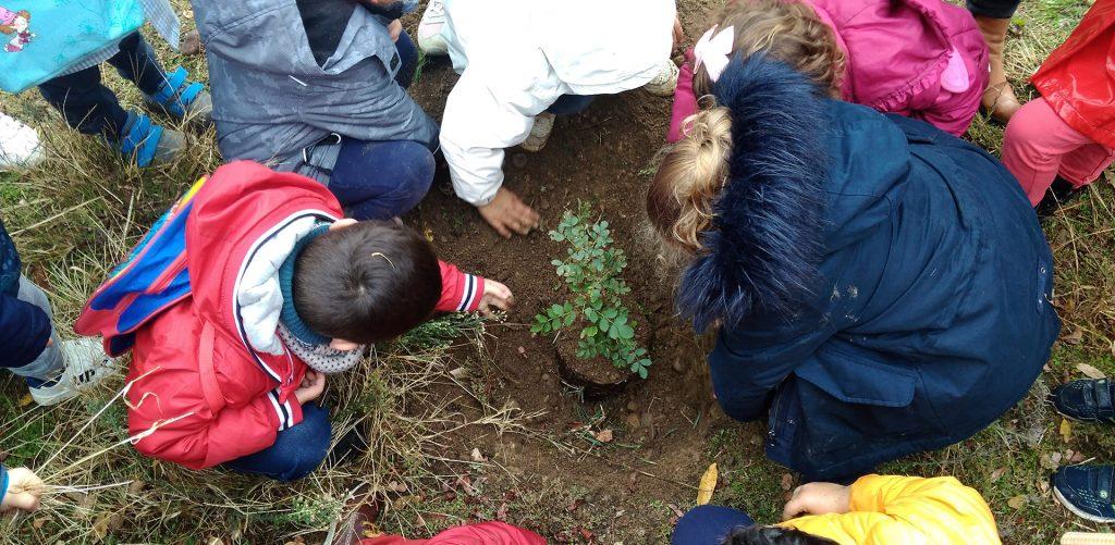 niños-reforestando-bosques