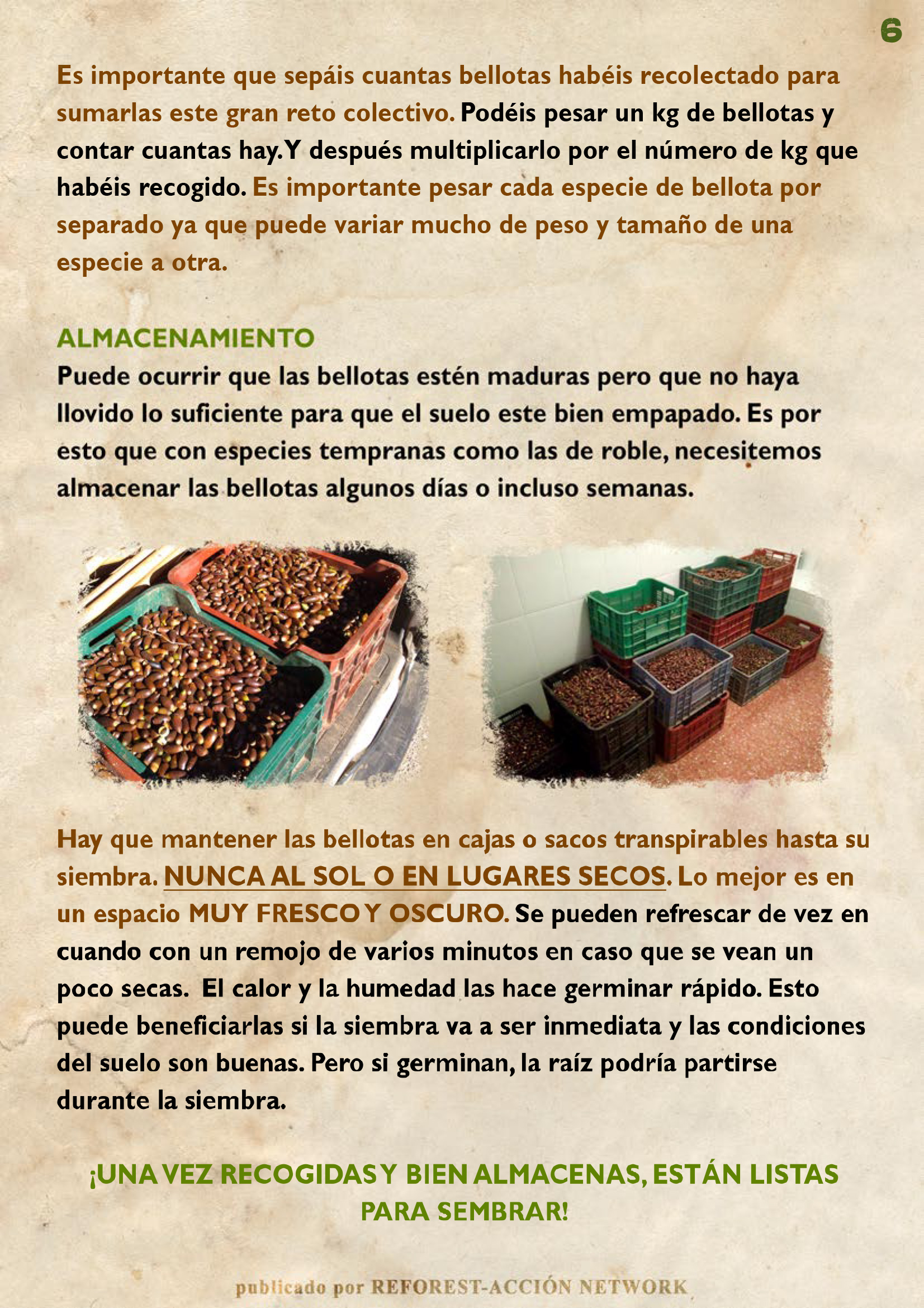 GUIA BELLOTERA - PAG 7