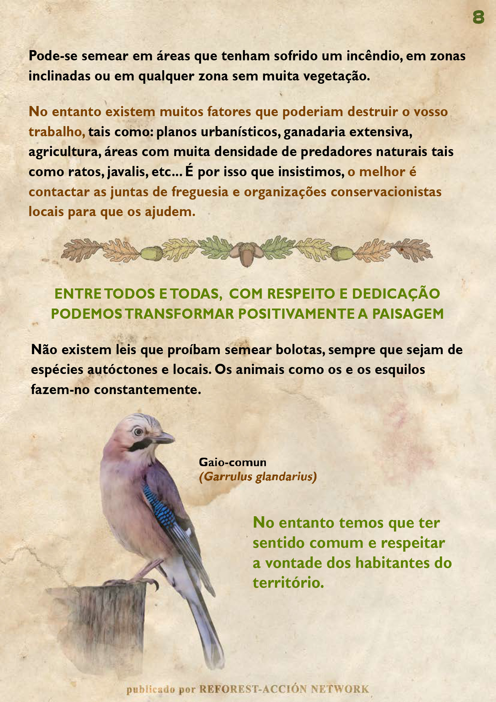 GUIA BELLOTERA - PAG 9 PT