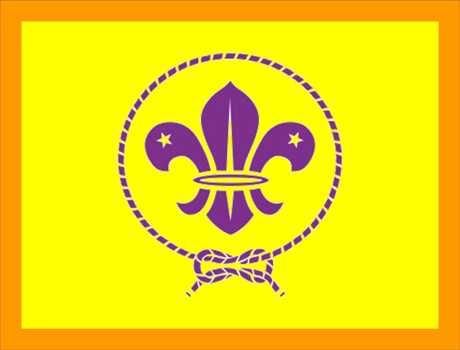 Bandera de Grupo