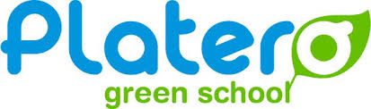 logo platero green school